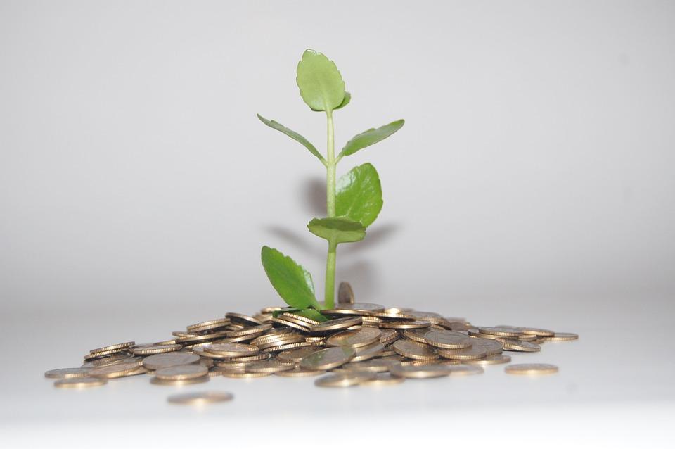 Cashflow - Une bonne gestion est indispensable
